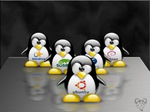 Imagem: http://oficinaspedagogicasdf.blogspot.com.br/2011/11/conheca-o-linux.html